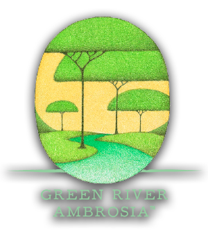 Green River Ambrosia